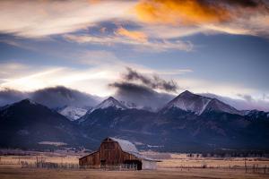 San Greys by Dan Ballard