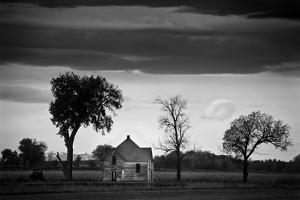 The Old Place by Dan Ballard