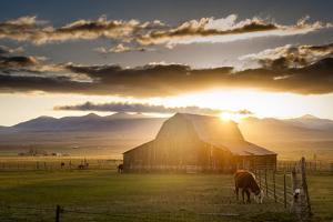Wet Mountain Barn I by Dan Ballard