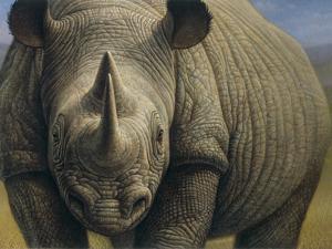 Rhinos by Dan Craig