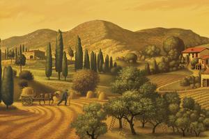 Tuscan Landscape by Dan Craig