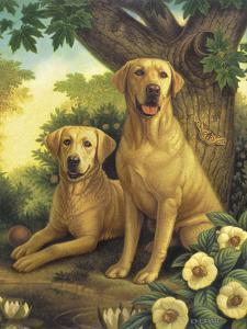Yellow Labs by Dan Craig