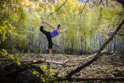 Katie Paulson Practices Yoga Among The Cottonwood Trees In An Autumn Morning In Indian Creek, Utah