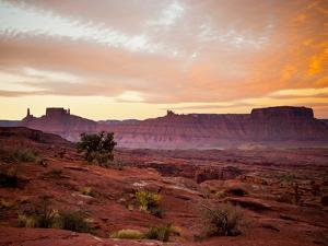 Sunrises in the Moab Desert - Viewed from the Fisher Towers - Moab, Utah by Dan Holz