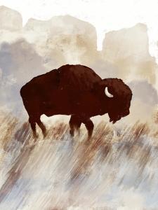 Buffalo Sunset Hill I by Dan Meneely