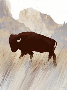 Buffalo Sunset Hill II by Dan Meneely