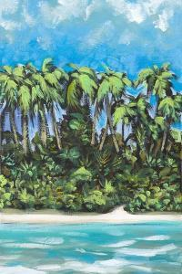 Coastal Escape I by Dan Meneely