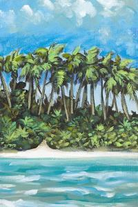 Coastal Escape II by Dan Meneely
