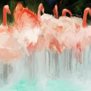 Flamingo Dance by Dan Meneely