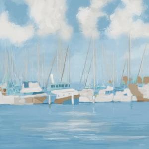Golf Harbor Boats II by Dan Meneely