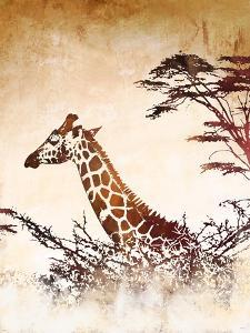 Safari Giraffe I by Dan Meneely