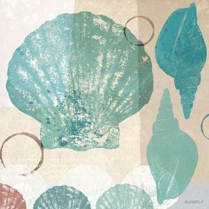 Shell Collage I by Dan Meneely