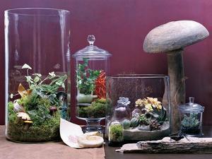 House & Garden - September 2006 by Dana Gallagher