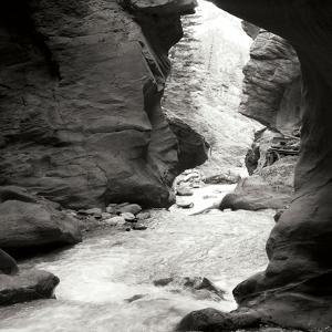 Box Canyon IV by Dana Styber