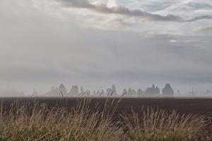 Foggy Morning II by Dana Styber