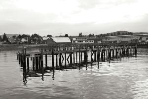 Unsafe Dock BW by Dana Styber