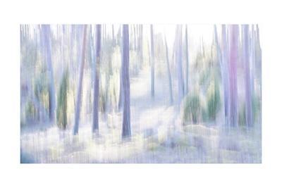 https://imgc.artprintimages.com/img/print/dance-with-the-light_u-l-q1gvjgw0.jpg?p=0