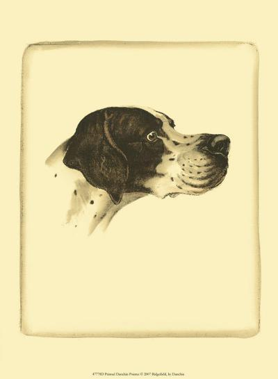 Danchin Pointer-Danchin-Art Print
