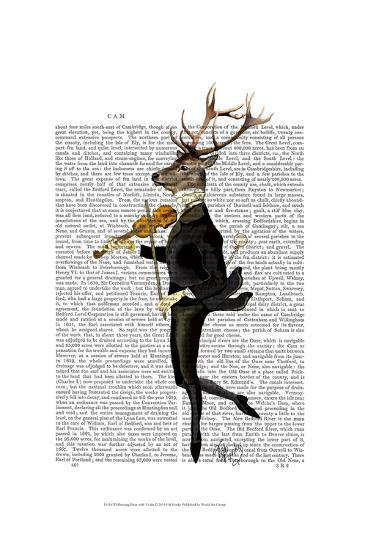 Dancing Deer with Violin-Fab Funky-Art Print