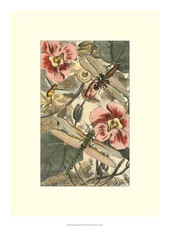 https://imgc.artprintimages.com/img/print/dancing-dragonfly-ii_u-l-ph6mdt0.jpg?p=0