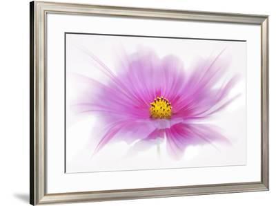 Dancing Flower Deep Pink Cosmos-Cora Niele-Framed Giclee Print