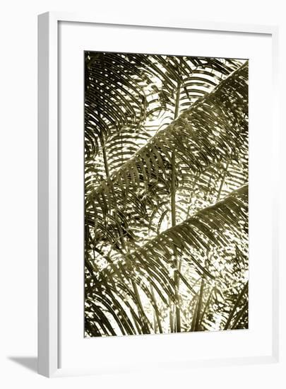 Dancing Light II-Alan Hausenflock-Framed Photographic Print
