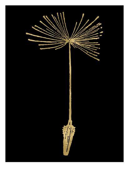 Dandelion 1 Golden Black-Amy Brinkman-Art Print