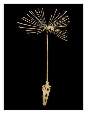 https://imgc.artprintimages.com/img/print/dandelion-1-golden-black_u-l-f8bzyl0.jpg?p=0