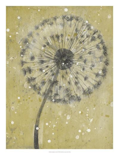 Dandelion Abstract I-Tim O'toole-Art Print