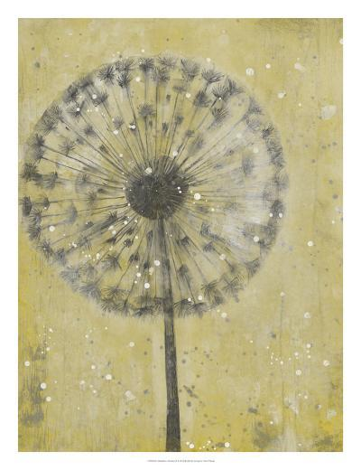 Dandelion Abstract II-Tim O'toole-Art Print