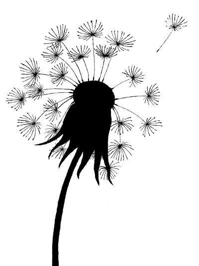 Dandelion Black And White- falonkoontz-Art Print