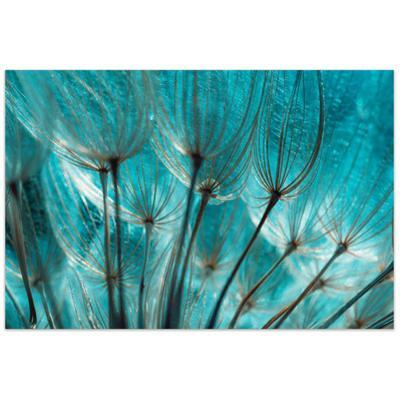 Dandelion - Free Floating Tempered Glass Wall Art