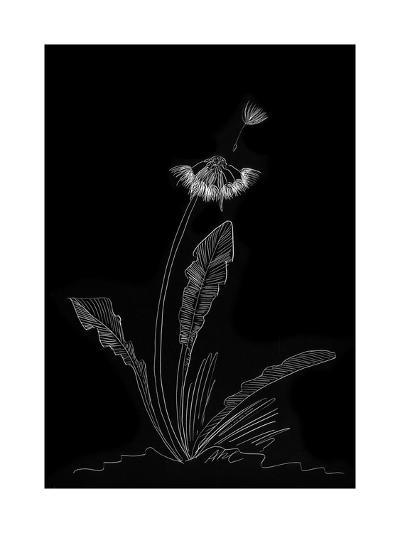 Dandelion Garden II-Alicia Ludwig-Art Print