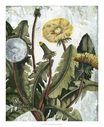Dandelion Patina I-Naomi McCavitt-Giclee Print