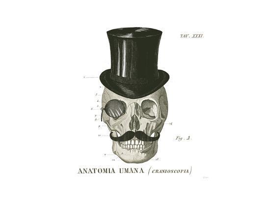 Dandy Bones I-Sue Schlabach-Art Print