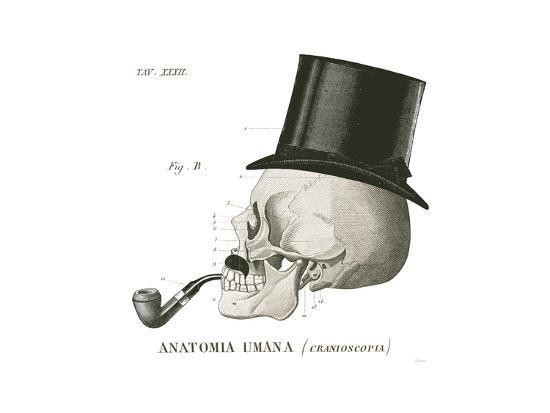 Dandy Bones II-Sue Schlabach-Art Print