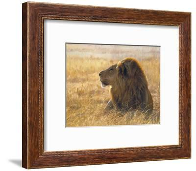 John Banovich Danger on the Wind Lion African Art Print Poster 32x27