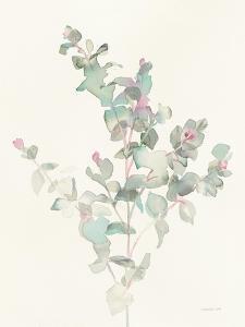 Eucalyptus II by Danhui Nai