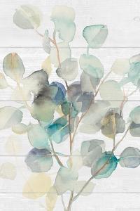Eucalyptus III on Shiplap Crop by Danhui Nai