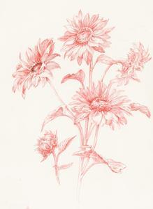 Farm Nostalgia Flowers I by Danhui Nai