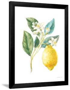 Floursack Lemon I on White by Danhui Nai