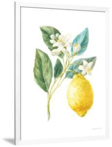 Floursack Lemon I on White by Danhui Nai