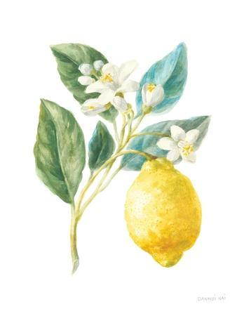 Floursack Lemon I on White