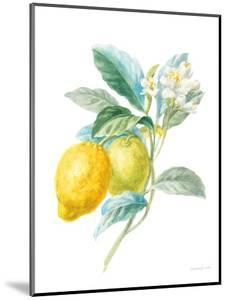 Floursack Lemon II on White by Danhui Nai