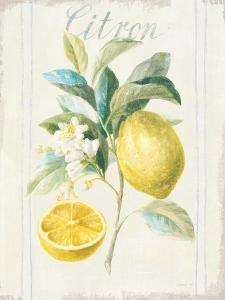 Floursack Lemon IV v2 by Danhui Nai