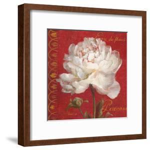 Paris Blossom IV by Danhui Nai
