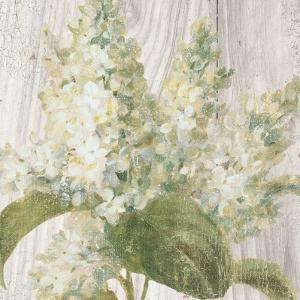 Scented Cottage Florals II Crop by Danhui Nai