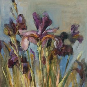 Spring Iris I by Danhui Nai