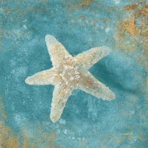 Treasures from the Sea IV Aqua by Danhui Nai