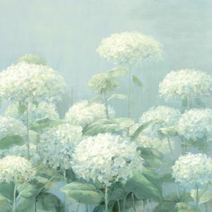 White Hydrangea Garden Sage Crop by Danhui Nai